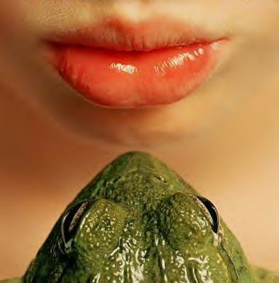 kiss frog dating