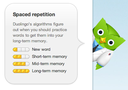 How cute is this owl? Another great reason to use Duolingo!